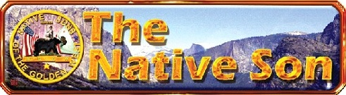 NativeSonBanner